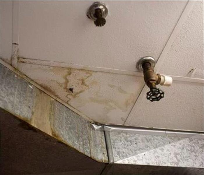 Water Damage Spring Showers May Bring Flowers and Also Home Damage for Homeowners