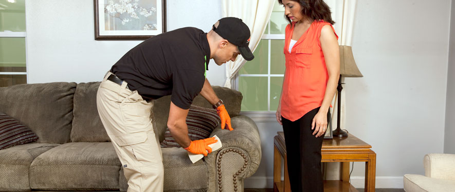 Northeast Heights, NM carpet upholstery cleaning